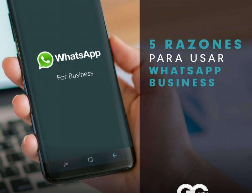 5 Razones para usar WhatsApp Business