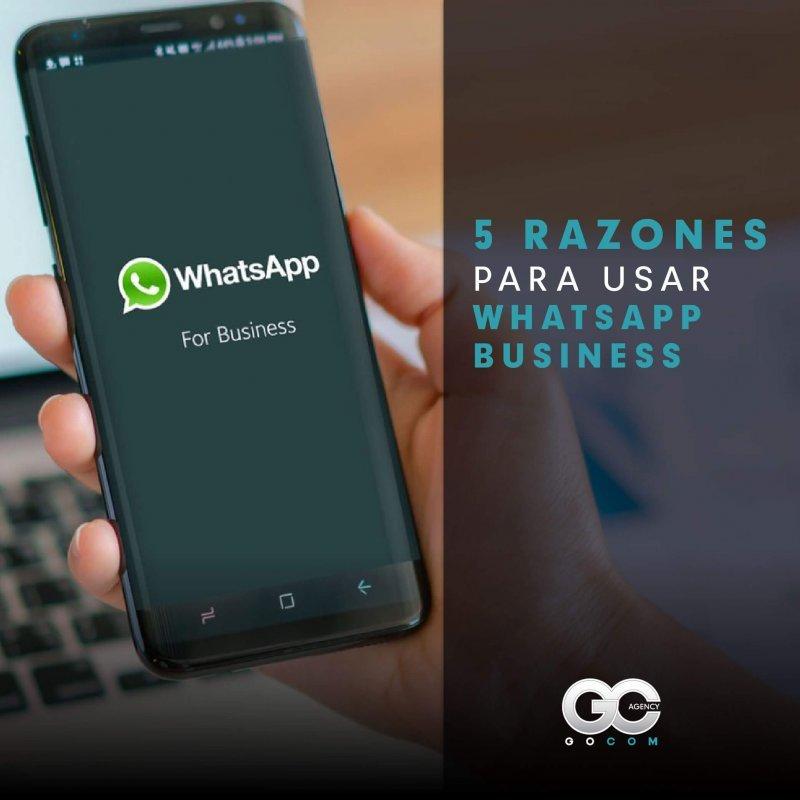 gocom agency agencia de marketing whatsapp business consejo 1